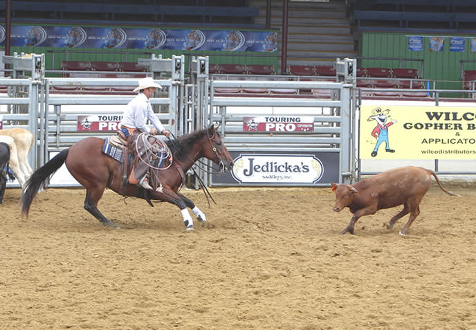 Cutting Horse Show at Paso Robles Events Center