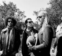 Alice in Chains musicians