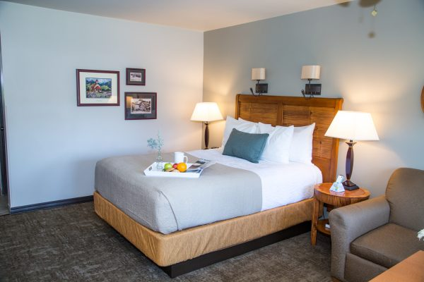 Adelaide Inn Hotels Paso Robles - Standard Queen