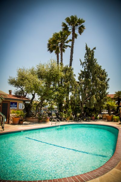 Adelaide Inn Hotels Paso Robles Pool